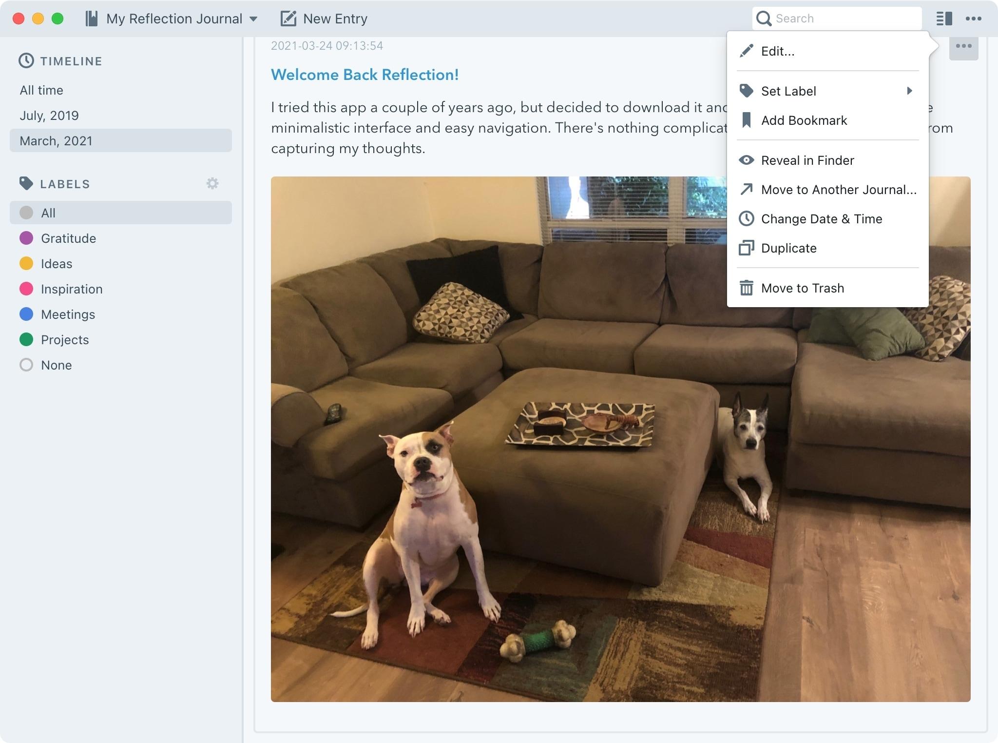 Application Reflection Journal pour Mac